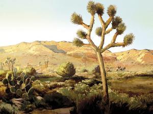 Desert Wilderness by Mark Chandon