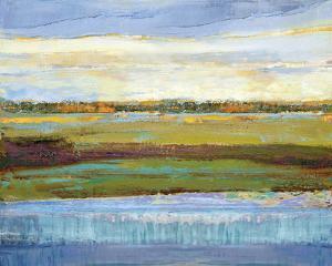 Flatland Reflection by Mark Chandon