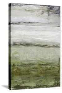 Gila by Mark Chandon