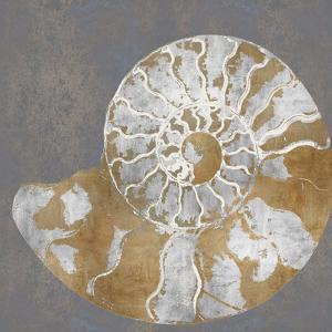 Nautilus II by Mark Chandon