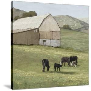 Pastoral - Favourite Field by Mark Chandon