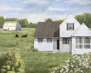 Prairie Life by Mark Chandon