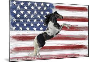 Stars, Stripes And Stallions by Mark Chandon