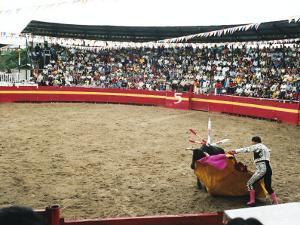 Bull Fighting, Tena, Ecuador, South America by Mark Chivers