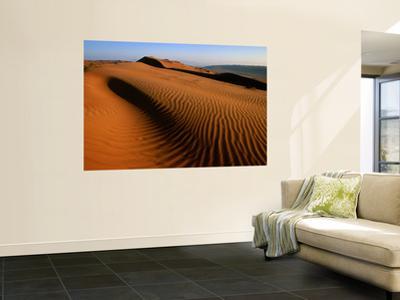 Wind-Sculpted Sand Dunes
