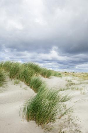 Sand Dunes and Dramatic Sky, Schiermonnikoog, West Frisian Is, Friesland, The Netherlands (Holland) by Mark Doherty