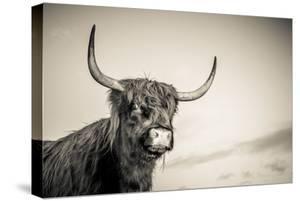 The Highlands 3 by Mark Gemmell