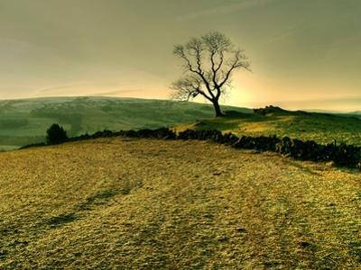 Winters Silence by Mark Gemmell