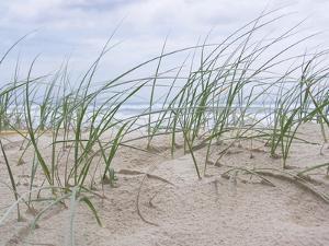 Seaside by Mark Goodall