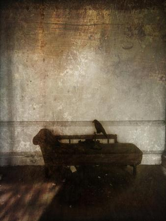 Beauty Is a Witch' Series Elvaston Castle..'Crow and Chaise'