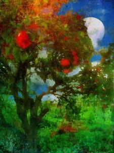 orchard in moonlight by Mark Gordon