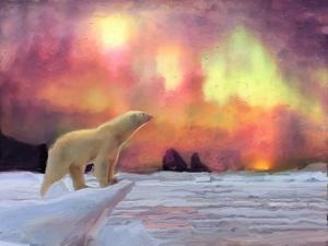 Polar Bear by Mark Gordon