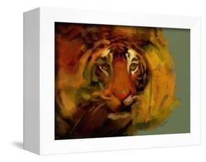 Tiger by Mark Gordon