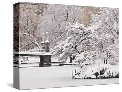 Snow covered trees with a footbridge in a public park, Boston Public Garden, Boston, Massachusetts,
