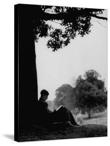 British Author Colin Wilson Sitting Underneath a Tree Wrapped in a Sleeping Bag, Reading a Book by Mark Kauffman