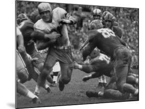 College Football Game: Georgia Tech Vs Notre Dame by Mark Kauffman