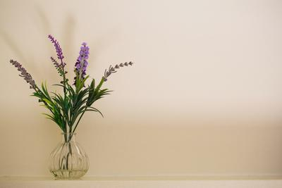 Glass vase containing sprigs of lavender