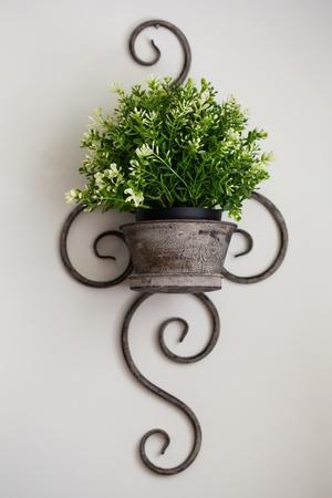 Wall mounted wire planter holding plant pot