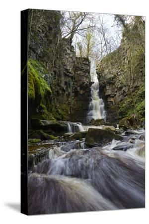 Mill Gill Force Waterfall, Askrigg, Wensleydale, North Yorkshire, Yorkshire