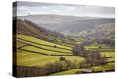 Swaledale, North Yorkshire, Yorkshire, England, United Kingdom, Europe