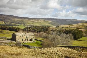 Swaledale, Yorkshire Dales, North Yorkshire, Yorkshire, England, United Kingdom, Europe by Mark Mawson