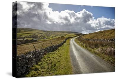 Swaledale, Yorkshire Dales, Yorkshire, England, United Kingdom, Europe
