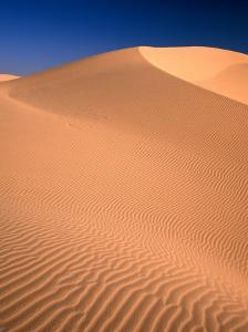 Algodones Dunes in Imperial Sand Dunes Recreation Area, California, USA by Mark Newman