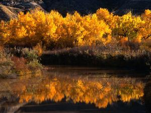 Autumn Colours of Drumheller Valley in Alberta, Drumheller Valley, Canada by Mark Newman