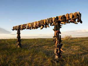 Boot Rack by Mark Newman