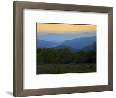 Looking Out over Forest-Covered Mountains in Evening Light