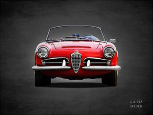 Alfa Giulia 1600 Spider 1964 by Mark Rogan