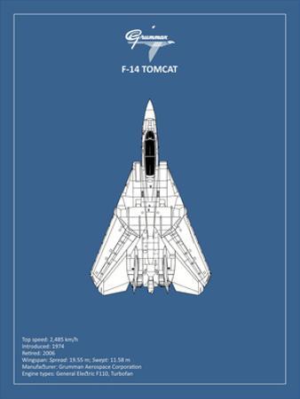 BP F-14-Tomcat by Mark Rogan