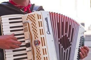 A Street Musician Plays the Accordion, Lyon, Rhone, Rhone-Alpes, France, Europe by Mark Sunderland