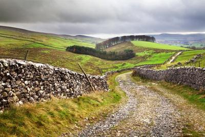 Rural Landscape in North Yorkshire, England