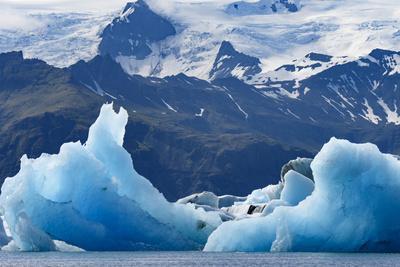 Iceland, floating glaciers form blue ice sculptures in Jokulsarlon, glacier lagoon.