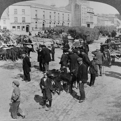 Market, Eyre Square, Galway, Ireland, C.1900--Giclee Print