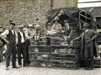 Market Vendors with Chickens--Photographic Print