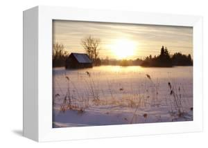 Federsee Nature Reserve at Sunset in Winter by Markus