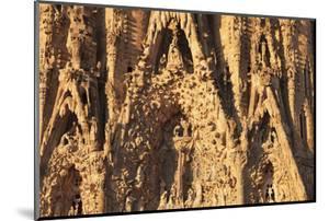 Facade of the Nativity, Sagrada Familia, by architect Antonio Gaudi, UNESCO World Heritage Site, Ba by Markus Lange