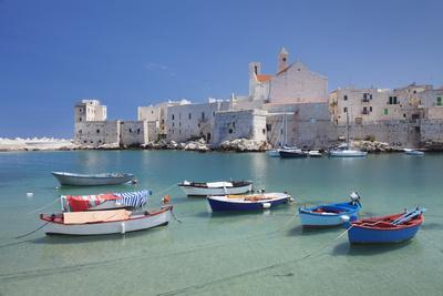Fishing boats at the harbour, old town with cathedral, Giovinazzo, Bari district, Puglia, Italy, Me