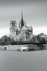 Notre Dame Cathedral on the River Seine, Paris, Ile De France, France, Europe by Markus Lange