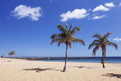 Playa De Las Teresitas Beach, San Andres, Tenerife, Canary Islands, Spain, Europe by Markus Lange
