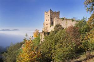Ruin Schauenburg, Oberkirch, Black Forest, Baden Wurttemberg, Germany by Markus Lange