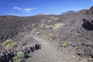 Ruta De Los Volcanes Hiking Path, San Antonio Volcano Middle, Canary Islands by Markus Lange