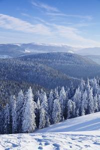 View from Belchen Mountain to Feldberg Mountain in Winter, Black Forest, Baden-Wurttemberg, Germany by Markus Lange