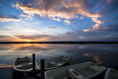 Sunset at the Federsee Near Bad Buchau, Baden-WŸrttemberg, Germany, Rowing Boat in the Lake