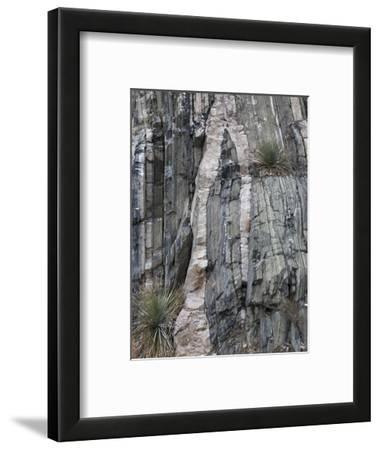 Felsic Sills Intruding Metasedimentary Rock, Franklin Mountains, El Paso, Texas, USA