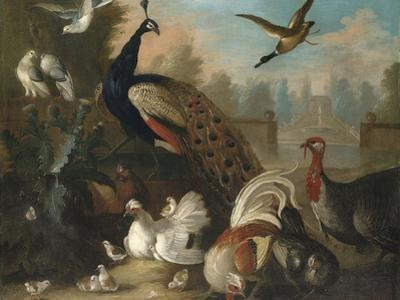 A Peacock and Other Birds in an Ornamental Landscape by Marmaduke Cradock