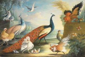 Two Peacocks, Doves, Chickens and a Rooster in a Parkland by Marmaduke Cradock