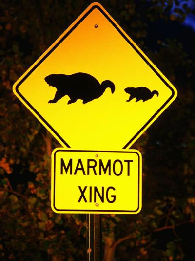 Marmot Crossing Sign Near Maroon Bells, Aspen, Colorado-Holger Leue-Photographic Print
